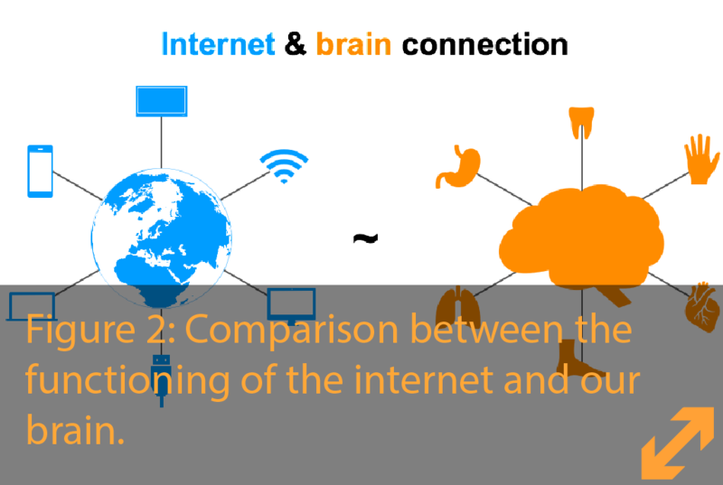 Internet & Brain Connection